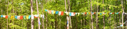 Prayer flags at the Tibetan Meditation Center, Maryland